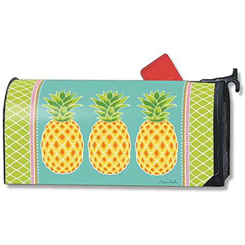 (MailWraps Preppy Pineapple Mailbox Cover 01473 )