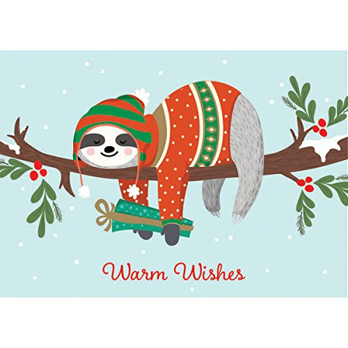 Graphique Sloth Boxed Cards - 15 Cute Winter-Dressed Sloth Holiday Cards Above Embellished Red Foil