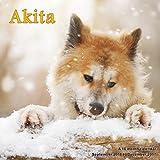 Akita Calendar - 2017 Wall Calendars - Calendar 2016 - Dog Breed Calendars - Monthly Wall Calendar by Magnum
