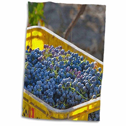 3drose-danita-delimont-grapes-cabernet-sauvignon-grapes-from-a-vineyard-china-12x18-hand-towel-twl-2