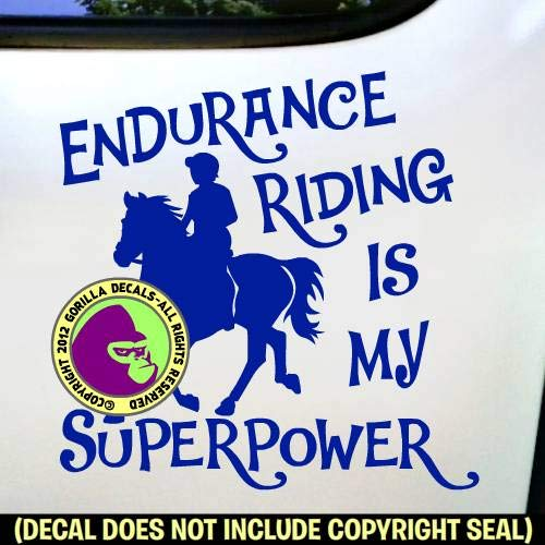 ENDURANCE IS MY SUPERPOWER Horse Rider Riding Vinyl Decal Sticker B