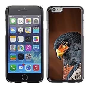 Be Good Phone Accessory // Dura Cáscara cubierta Protectora Caso Carcasa Funda de Protección para Apple Iphone 6 // hawk bird tropical feather brown nature