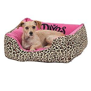 WWE Divas 20X17 Rectangular Lounger Pet Bed