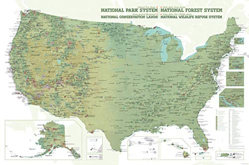Best Maps Ever NPS x USFS x BLM x FWS Interagency Map 24x36 Poster (Army Green & White) (Usa Map 24 X 36)