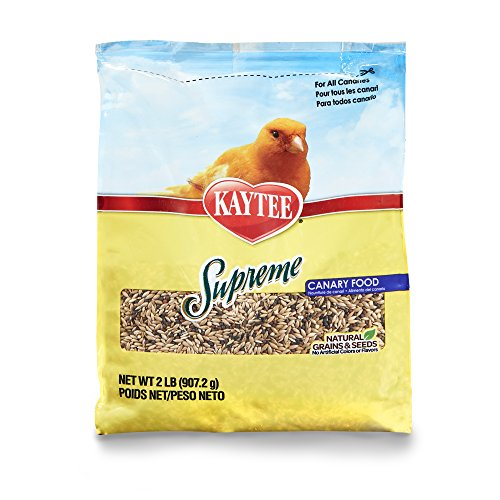 51DsnX63MZL - Kaytee Supreme Bird Food for Canaries, 2-lb bag