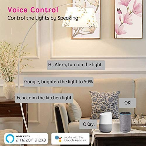 Smart Wi-Fi Clear LED Edison Light Bulb ST21 ST64 E26 6W 60W Equivalent Dimmable Soft White 2700K 650LM CRI 80ra PF 0.9 No Hub Required Compatible with Alexa Google Assistant 2P Clear Glass