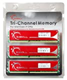 6GB G.Skill DDR3 PC3-12800 (1600MHz) CL9-9-9-24 Triple Channel kit NQ Series