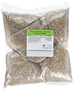 "Certified Organic Hard Red Wheat Sprouting Seed: 5 Pre-Measured Bags for 10""x20"" Trays (Approx 5 Lb) For Growing Wheatgrass to Juice, Grind for Flour & Bread, Ornamental Wheat Grass – Non-GMO"