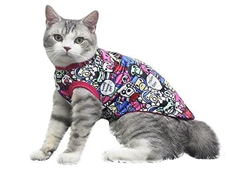 Strollway Ropa Para Perros Chaleco De Perro De Gato Color De Dibujos