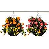 Betta Basket 2 Piece Hanging Planter, Black