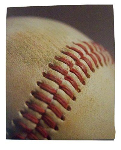 staples-two-pocket-paper-folder-baseball-folder-cowhide-and-seam