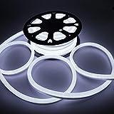 Vasten LED Neon Rope Light Flexible Hoses IP67 Decoration Light (White)