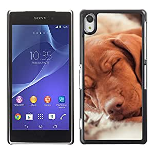 Vortex Accessory Carcasa Protectora Para Sony Xperia Z2 D6502 D6503 D6543 L50T L50U - Vizsla Golden Retriever Hund Dog Canine -