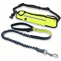 Alihoo - Correa para Correr con cinturón Abdominal y Bolsillo para Perros pequeños y medianos para pasear con Manos Libres o Correr, Extensible de 140 a 160 cm