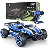 GizmoVine 1/18 RC Car 4WD High Speed 2.4Ghz Remote Control Car Electric Racing Sand RC Buggy Vehicle with Rechargeable Battery (BLUE)