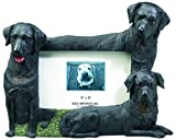 Black Labrador Retriever Dog 4'' x 6'' Photo Frame