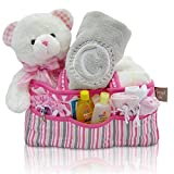 New Baby Girl Gift Bear and Diaper Bag