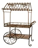 Deer Park Ironworks (TC104) Steel Flower Cart, Large Review