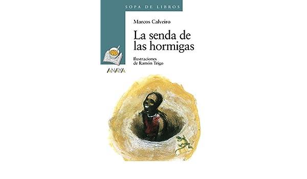 Amazon.com: La senda de las hormigas (Literatura Infantil (6 ...