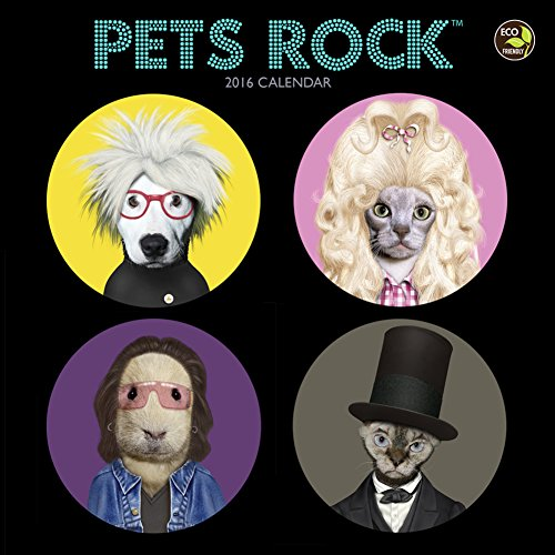 2016 Pets Rock Small Wall Calendar