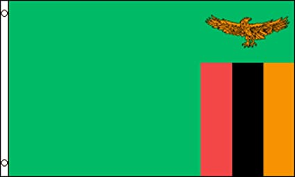 Amazon com : Zambia Flag 2x3ft Poly : Garden & Outdoor