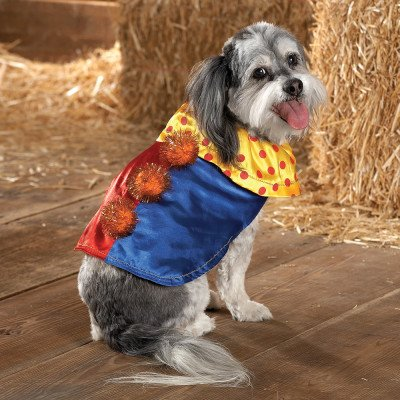 Clown Dog Dress Up Halloween Costume - XSmall