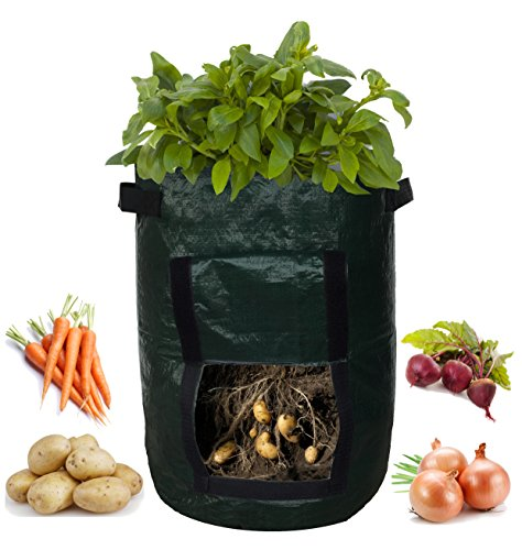 Garden Planter Bag (2-pack) - With Access Flap for Harvesting - Eco-Friendly - Heavy Duty & Durable