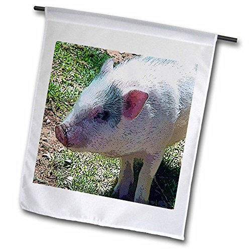 3dRose fl_48276_1 A Pink Furry Pig That Has Been Posturized on Green Grass Garden Flag, 12 by 18-Inch (Furry Pig)