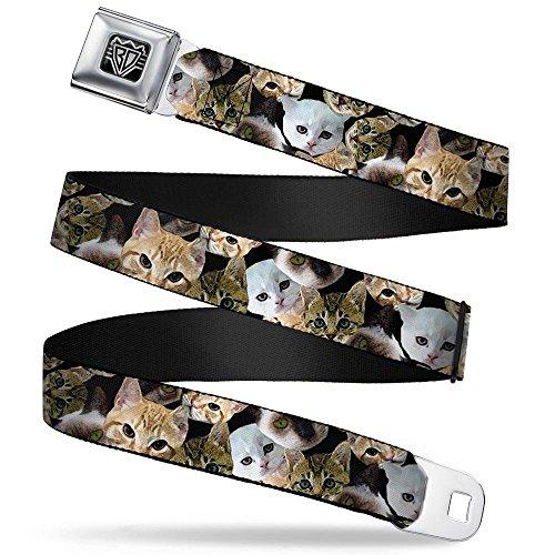 (Buckle-Down Seatbelt Belt - Kitten Faces Scattered Black - 1.5