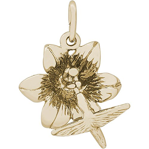 Rembrandt Charms 10K Yellow Gold Hibiscus W/Hummingbird Charm (0.66 x 0.71 inches) ()