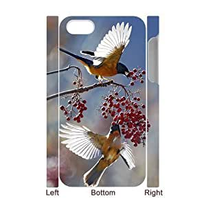 3D Bumper Plastic Case Of Hummingbird customized case For Iphone 4/4s