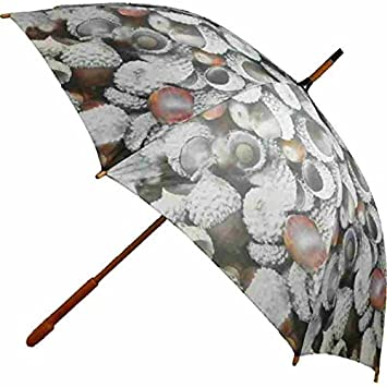 Paraguas – Stock pantalla – Bellotas pantalla – Protector de lluvia grande para mujer y hombre