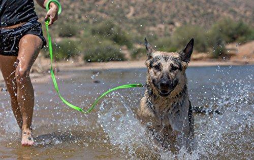 Product image of WIGZI 6GLSS58-OR Stink Proof, Waterproof, Reflective 6' Long Dog Leash, Universal Size, Neon Orange