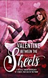 Valentine Between the Sheets: A Reverse Harem Anthology of Stories that Get to the Point