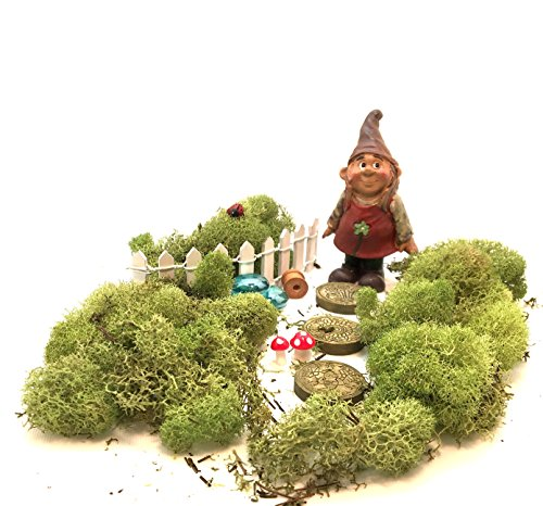 Gnome Garden Kit - Girl Gnome with 11 Miniature Fairy Garden Accessories and Moss
