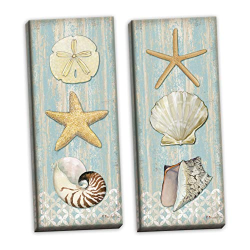 Pictures Sand Dollars - PosterArtNow Beautiful Spa Shells; Conch, Starfish, Sand Dollar; Two 8x20in Hand-Stretched Canvases