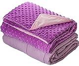 7lb Weighted Blanket Dot Minky Cover Kids Teens (Inner Light Violet/Cover Violet & Pink, 41