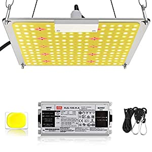 GROSSYLAND LED Grow Light for Indoor Plants Full Spectrum 1000W Plant Growing Lamps Bulbs with High PPFD Value 2.5×2.5…