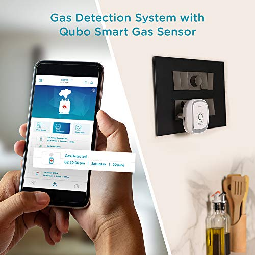 Security System for Smart Home