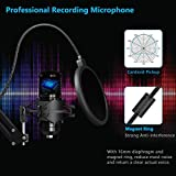 PEMOTech USB Microphone Kit for Computer, Studio