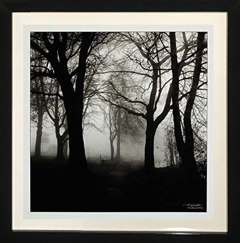 "Framed Black and White Photography""Morning Texture"" by Harold Silverman"