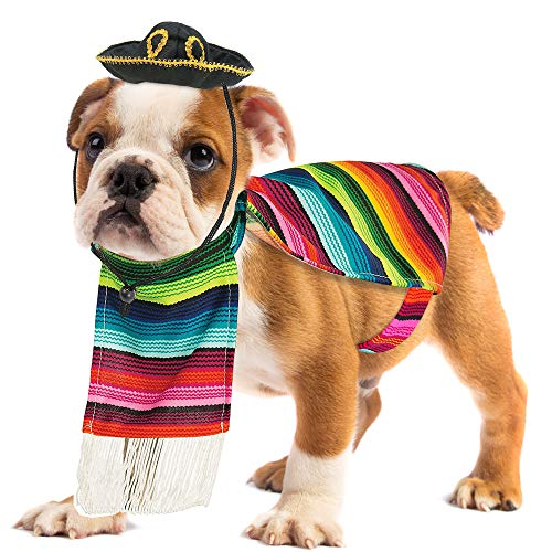 M&m Poncho Costume (Skeleteen Mexican Serape Dog Costume - Cinco de Mayo Poncho and Sombrero Costumes for Pets (Size)
