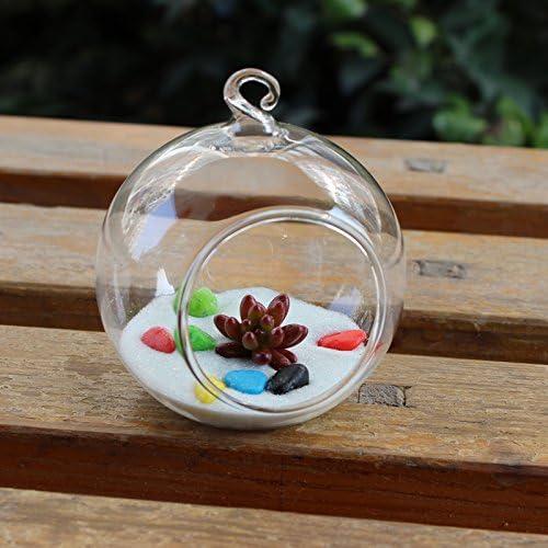 Baoblaze Vase Transparent En Verre Boule Suspendu Pour Plante Fleur Fait /à La Main--Diam/ètre:20cm