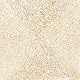 duncan sealer - Duncan Sparklers Brush-On Glitter Sealer, 2 Ounce Bottle, SG880, Crystal