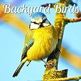 2017 Backyard Birds Mini Calendar