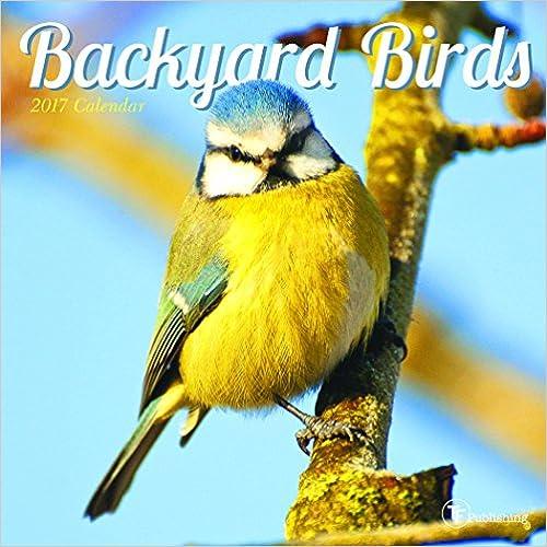 """""""""""TOP"""""""" 2017 Backyard Birds Mini Calendar. Online Listen clientes include codigos"""