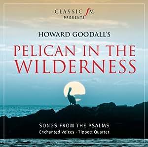 Pelican in the Wilderness