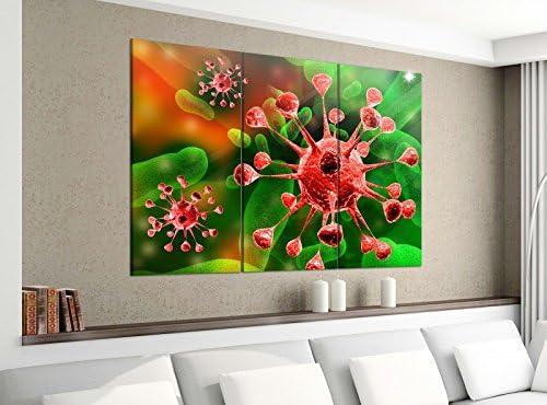 Acrílico cristal imágenes 3 piezas 150 x 120 cm Virus mikrobe medicinal bacterias Impresión acrílico de cristal acrílico imágenes Cuadro 14e1702, gesamt 150x120cm: Amazon.es: Hogar