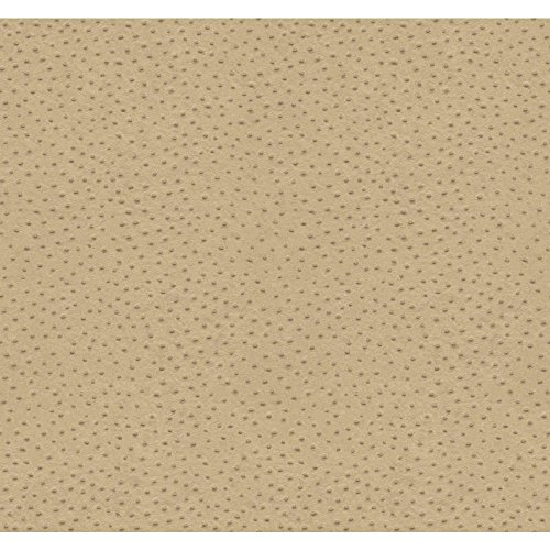 Beige Ostrich - York Wallcoverings RB8956 Natural Elements Ostrich Wallpaper, Beige, Brown, Silvery/Grey
