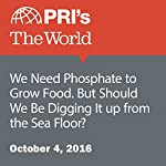 We Need Phosphate to Grow Food. But Should We Be Digging It up from the Sea Floor? | Nina Feldman